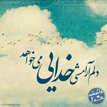 تصویر _gomnam137